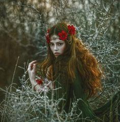 Beauty of January by Agnieszka Lorek / 500px