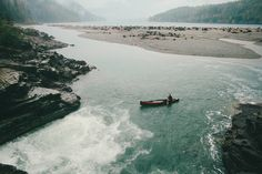 Linden + Fern - benchandcompass:    where the water falls into the...