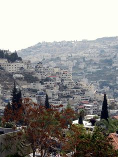 Jerusalem panorama | Israel   - Explore the World with Travel Nerd Nici, one Country at a Time. http://TravelNerdNici.com