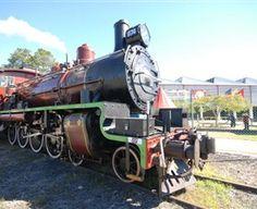 Circus Steam Train