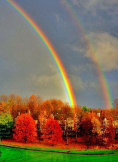 What a colorful world we live in! Double rainbows end in red  leaves foliage forest, trees leaf,
