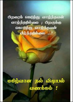 Good Morning Messages, Good Morning Images, Good Morning Quotes, Tamil Motivational Quotes, Morning Inspirational Quotes, Good Morning Coffee, Morning Wish, Tamil Wishes, Sunset Gif