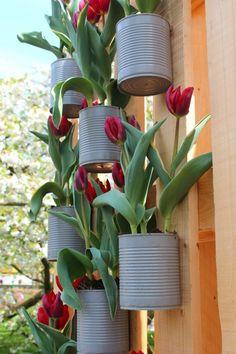 kreative gardenideen dosen rote tulpen