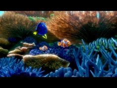#FindingDory #FindingNemo, #Pixar #Dory #cinema #Film #review