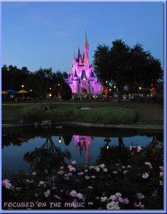 ~ Cinderella Castle, Pretty in Pink ~   Disney Wordless Wednesday Blog Hop