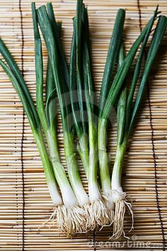 Polish Cold Green Onion Sauce  (1 ½ cups)