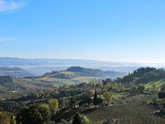 Tuscany : the views...