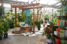 Your indoor tropical oasis. Garden Fencing, Garden Pool, Garden Landscaping, Garden Design Ideas Videos, Garden Ideas, Gardening Photography, Indoor Plants, Indoor Gardening, Container Flowers
