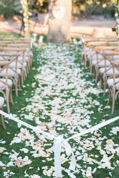 Tying a ribbon before guests are seated, guests are seated from the outside, so that the rose petal aisle isn't trampled. Cute idea.