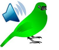 Have birds sound on your Android phones- Get Birds Sounds Calls App for Android Free from here.