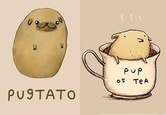 28 Adorable Animal Puns That Will Leave You Laughing.