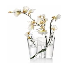 "Iittala Aalto Vase 6.25"" Clear ($175) ❤ liked on Polyvore featuring home, home decor, vases, iittala, iittala vase, glass vases and glass home decor"