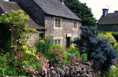 Another cottage garden