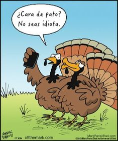 Funny Thanksgiving Pictures Thanksgiving is a festival of joy and happiness for most of the countries in the world and all people of these countries. Thanksgiving Cartoon, Thanksgiving Pictures, Thanksgiving Prayer, Happy Thanksgiving, Thanksgiving Ecards, Vintage Thanksgiving, Thanksgiving Appetizers, Thanksgiving Outfit, Thanksgiving Crafts
