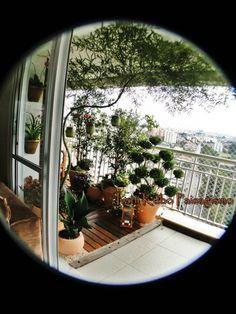 Ivani Kubo Paisagismo: Um jardim para chamar de seu... na varanda do apar...