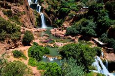In a small village two hours away from Marrakech, you will find the impressive Ouzoud Waterfalls of Morocco. Read all about this wonderful day trip from Marrakesh here! Morocco Beach, Visit Morocco, Amazing Places On Earth, Marrakesh, Africa Travel, Where To Go, Day Trips, The Good Place, Waterfalls