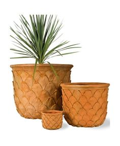 Picture of Pineapple Planter