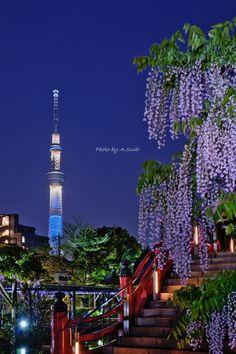 Tokyo SkyTree, Japan | Atsuhiko Sudou 東京スカイツリー