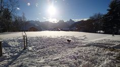 What a beautiful day in the Alps!