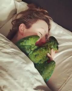 Good morning with cute parrot - Süss - Adorable Animals Funny Birds, Cute Birds, Cute Funny Animals, Cute Baby Animals, Animals And Pets, Beautiful Birds, Animals Beautiful, Beautiful Pictures, Photo Animaliere