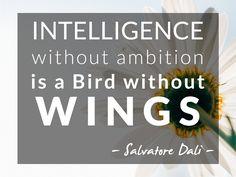 Inteligência sem ambição é como um pássaro sem asas...  Dá asas à tua vida aqui: http://www.123contactform.com/form-1240133/Contacto-Orinatura-Procuramos-Chefes?utm_content=buffer033fb&utm_medium=social&utm_source=pinterest.com&utm_campaign=buffer