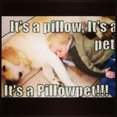 I want one... A #pillowpet that is!