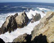 Cypress Grove Trail | Point Lobos Foundation | Carmel, CA