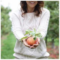 BC Tree Fruits Fried Apple Rings - Jillian Harris