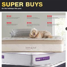 Macys Black Friday 2019 Ads and Deals Browse the Macys Black Friday 2019 ad scan and the complete product by product sales listing. Extra Firm Mattress, Macys Black Friday, Black Friday 2019, Friday News, Queen Mattress, Coupons, Coupon