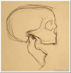 drawing an open mouth skull sketch