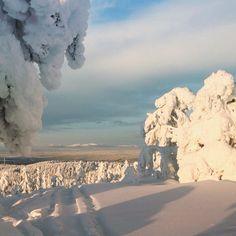 Taustalla siintää Pallas-Yllästunturi kansallispuisto. INSTAGRAM #BreakLevi @BreakLevi  Levi Ski Resort, Finland, Lapland Break Sokos Hotel Levi