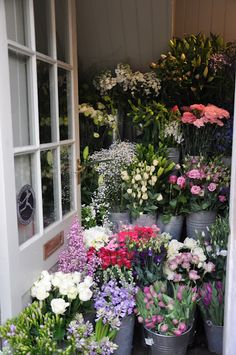 Love a good florist shop (and it doesn't make you fat!)
