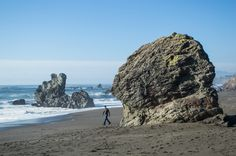 30+ Free Things to Do in Northern California