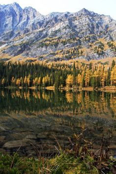 A Hike to Taylor & O'Brien Lakes, Banff NP
