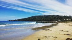 #sealife #beach #sky #sea #nature_shooters #nature #lorne #australia #instalifo by paulinapapachatzi http://ift.tt/1IIGiLS