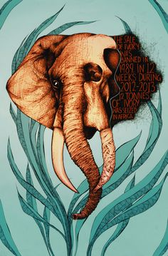 Human Harm: Posters for endangered species awareness