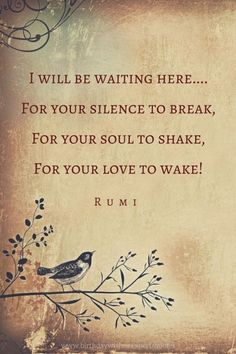 //I will be waiting here....For your silence to break,For your soul to shake,For your love to wake! #poetic