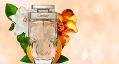 The iconic Panthère de Cartier now takes the form of Eau de Toilette. The maison chose this time to focus on a freshness perfectly adapted to the spring, with a balanced, feminine and daring fragrance, but transparent and light.