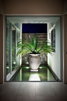 DDB DESIGN Exteriors & Pools - contemporary - Landscape - Melbourne - DDB Design Development & Building