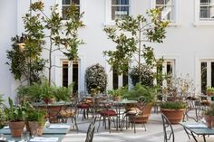 The Petersham restaurant in Covent Garden, an 'idyll of terracotta, wrought iron and magnolia trees' Organic Gardening Catalogue, Magnolia Trees, Rooftop Terrace, Green Terrace, Garden Trellis, London Restaurants, Covent Garden, Garden Ornaments, Outdoor Areas