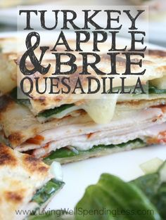 ... lunchtime quesadilla with smoked turkey apples havarti cheese
