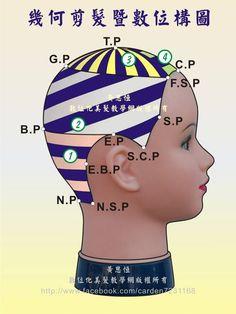 幾何剪髮完整裁剪設計區,結合橫髮片、正斜髮片、定點放射髮片,進行另一款創意剪髮之數位構圖-右側呈現
