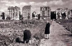 Polna, 1946 (by MW) Work Visa, Old Photography, Ppr, Krakow, Poland, New York Skyline, City Photo, The Past, Pictures