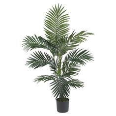 Nearly Natural Kentia Palm Silk Tree *** You can get more details by clicking on the image.