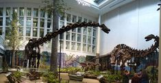 The Carnegie Natural History Museum in Pittsburgh has one of the most impressive collections of dinosaur bones in the world, not to mention tons of other intriguing exhibits.