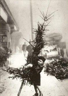 1915 ~ Lucky girl