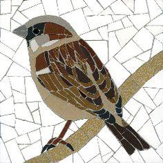 House_Sparrow.jpg 240×240 pixels