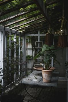 Swedish publication about Waterworks Plant Watering System - By Victoria Skoglund for Lantliv.com.