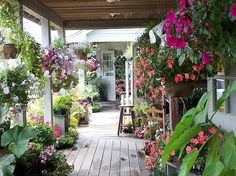 Secret garden, porch of flowers