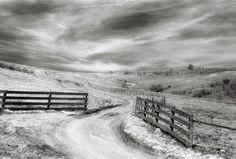 Winding Road...take me on a journey - 8x10 Fine Art Print $20